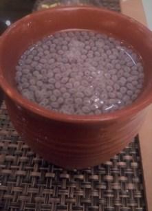 Gol Paani with Sabza Seeds
